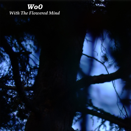 Listen to Wo0 – »With the Flowered Minds« (Phantom Channel)